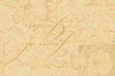 мебельная ткань флок DreamNostalgie 906